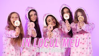 ANDRA GOGAN - IN LOCUL MEU (Official Video)