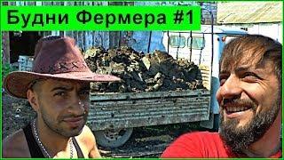 Будни фермера  #1:Как заработать на навозе 5000 в день Мысля от Эдгара(, 2014-05-17T17:05:19.000Z)