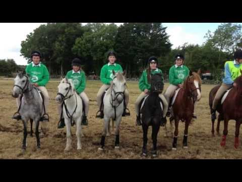 The Road To The Dublin Horse Show