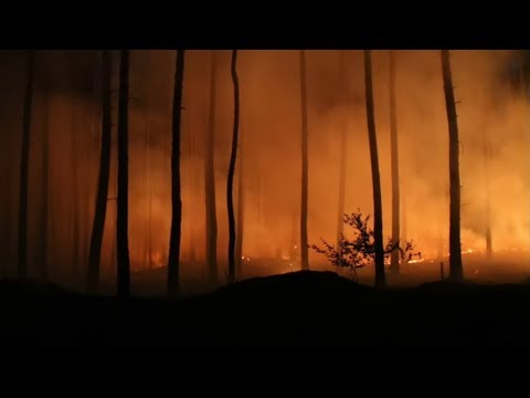 EVAKUIERUNGEN: Heftige Waldbrände in Mecklenburg-Vorpommern und Brandenburg