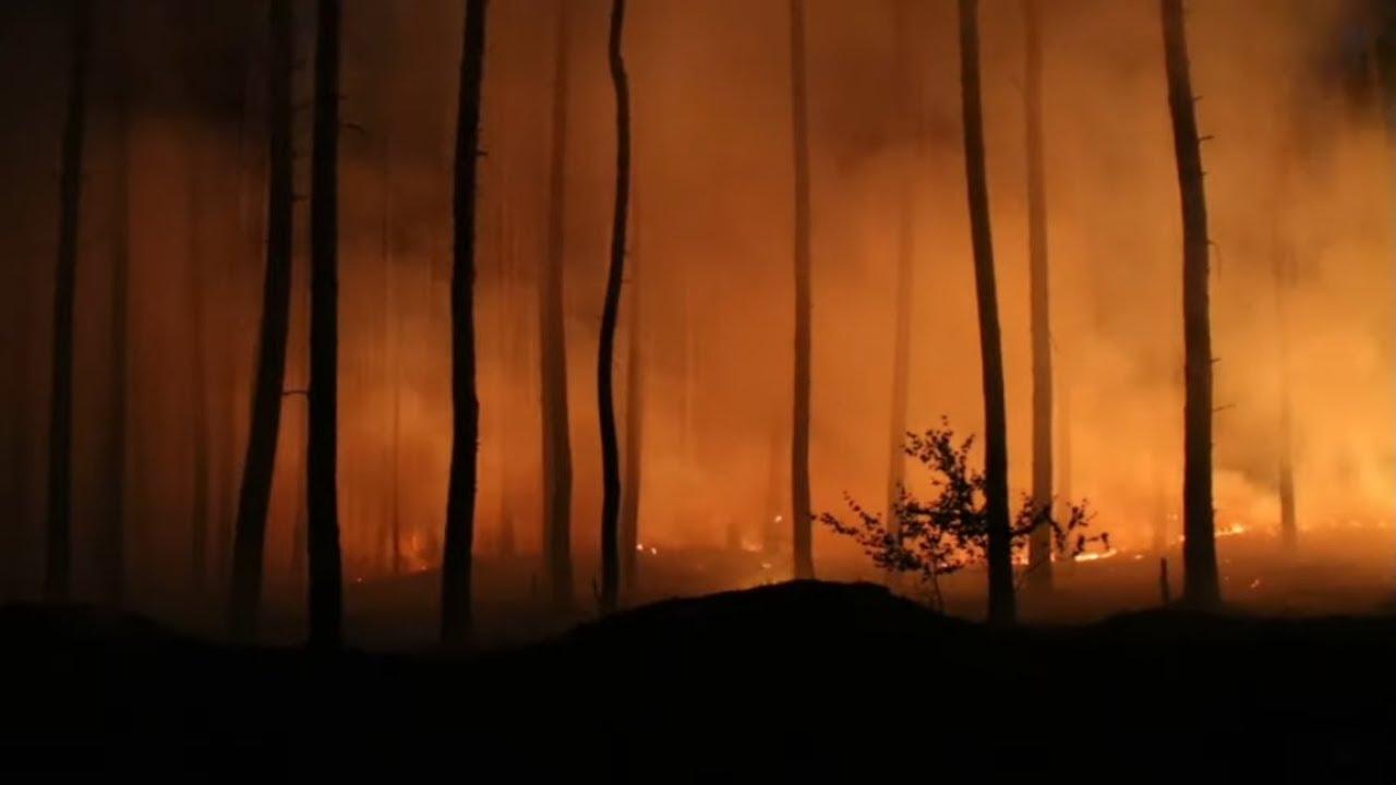 Heftige Waldbrände in Mecklenburg-Vorpommern und Brandenburg