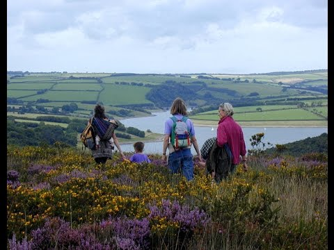 The Flora and Fauna of Exmoor National Park, England, UK