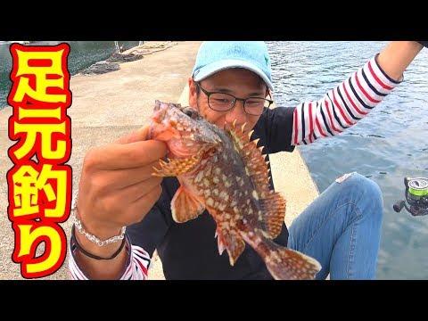足元にいる高級魚が簡単に釣れまくる!