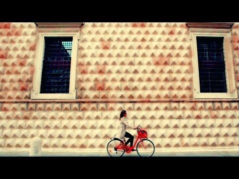 Feel Free Ferrara