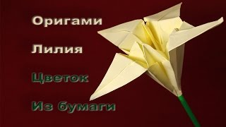 Как сделать Цветок Лилии из бумаги Оригами Лилия бумажные Цветы  Поделки Из бумаги(В этом видео вы узнаете как сделать бумажные цветы лилии оригами поделку из бумаги для начинающих., 2016-10-24T17:17:28.000Z)