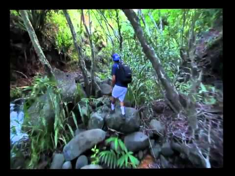 Kauai Travel Info: Adventure Planing on Kauai