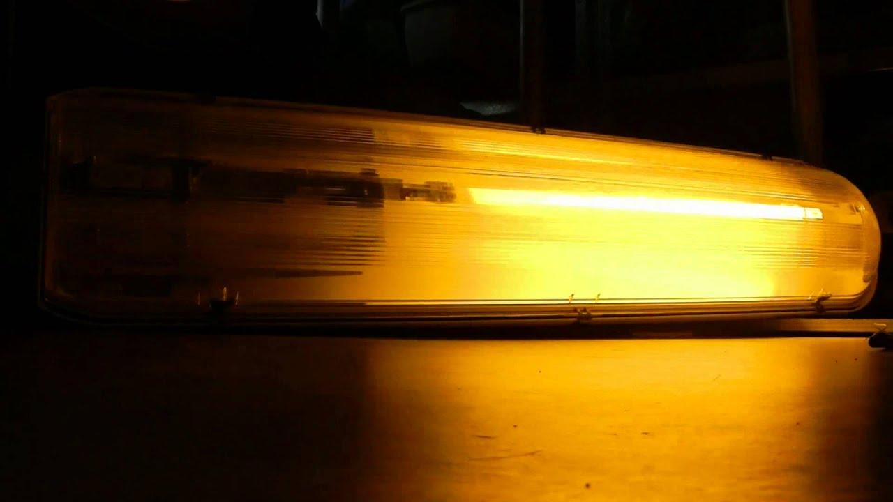 Philips Lampen Armaturen : Philips srs 201 with sox 135 watt lamp lantaarnpaal armatuur