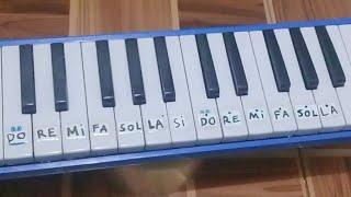 Tutorial Pianika Lagu You Raise Me Up