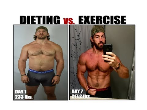 Is Diet More Important Than Exercise for Weight Loss? [The TRUTH]