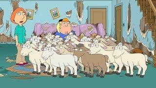 Peter raised Goats