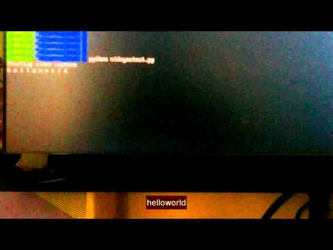 Raspberry Pi - Syncing data with Raspivid