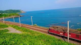 2次新潟色115系 快速列車