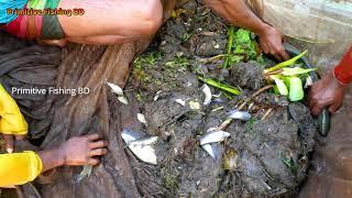 Amazing Net Fishing in River Fresh Water ! Best Fish Catching By Net