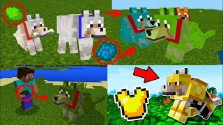 5 TRUCOS SUPER EPICOS CON LOBOS EN MINECRAFT (XBOX360/ONE/POCKET EDITION/PS4 PS3 PSVITA/PC/SWITCH)