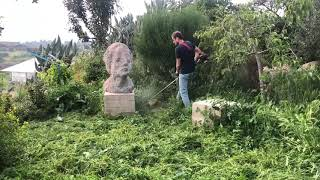 Poat Sculpture Cleaning | Avner Levinson
