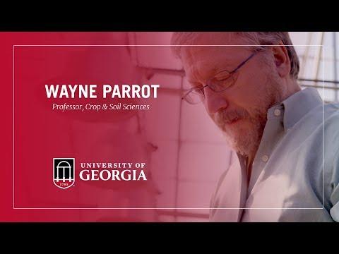 2018 Distinguished Research Professor - Wayne Parrott
