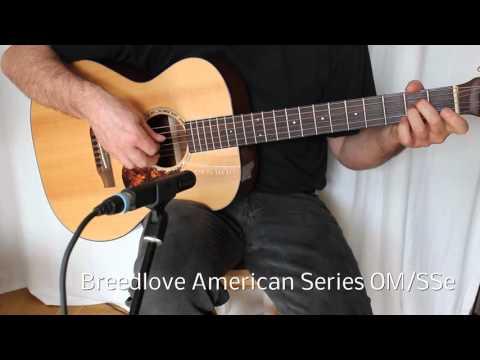 Martin vs Eastman vs Breedlove Fingerstyle Guitar Sound Comparison