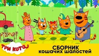 Три Кота Сборник Кошачьих Шалостей Мультфильмы для детей 2020