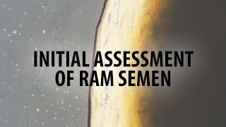 Initial assessment of ram semen