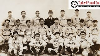 Why the Chicago Cubs are Named After a Baby Bear and The Long, Weird History of Their Mascot