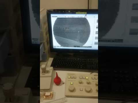 starting the electron gun and the experiment using SEM