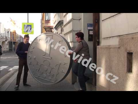 ČR - politika - euro - koruna - protes