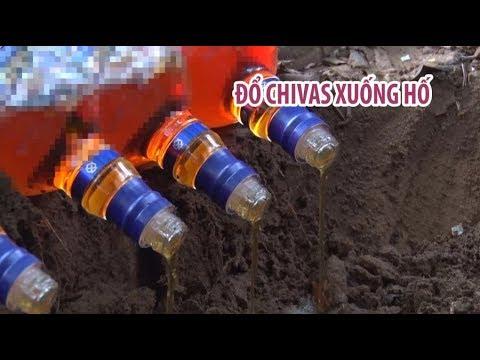 Tiêu hủy, chôn lấp hàng chục chai Chivas 18 và hàng hóa không rõ nguồn gốc