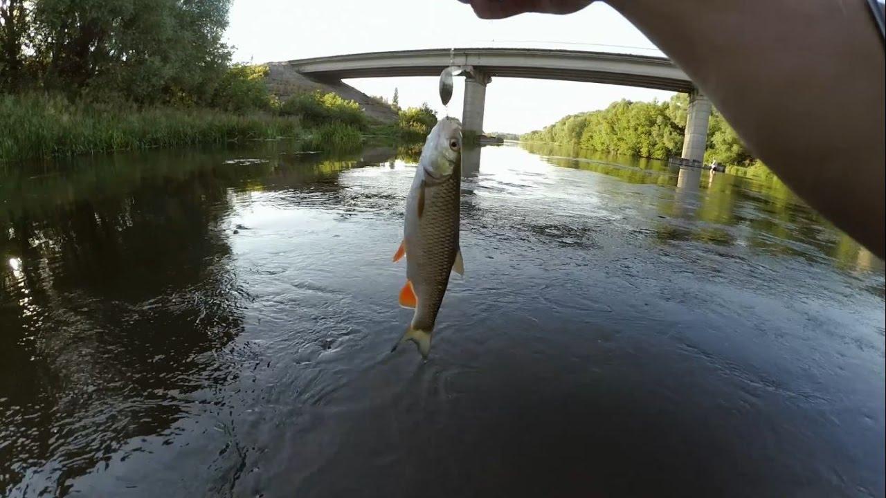 рыбалка на дону в июле слюнки