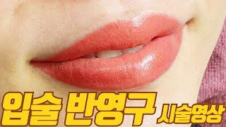[반영구 화장] 입술 …