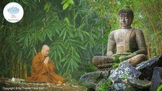 Ngỡ ngàng khi nghe Thiền Sư đắc đạo tiết lộ bí mật cách hành thiền để đạt được an lạc hạnh phúc