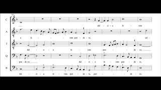 Adrian Willaert - O crux splendidior