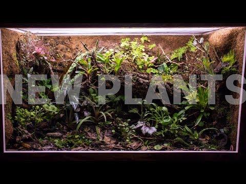planning-&-new-plants