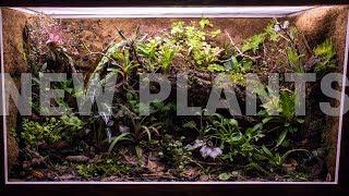 planning-new-plants