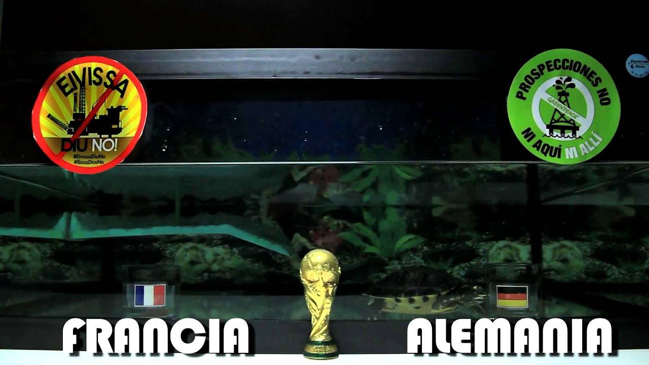 RESULTADO CUARTOS DE FINAL MUNDIAL BRASIL 2014 - FRANCIA vs ALEMANIA ...