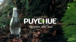 Agua Mineral Puyehue - Llave