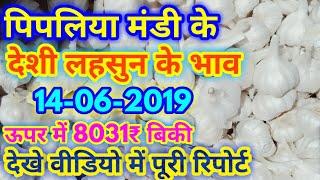 Lahsun ka bhav aaj ka| पिपलिया मंडी के 14-06-2019 के देशी लहसुन के भाव इस प्रकार रहे।