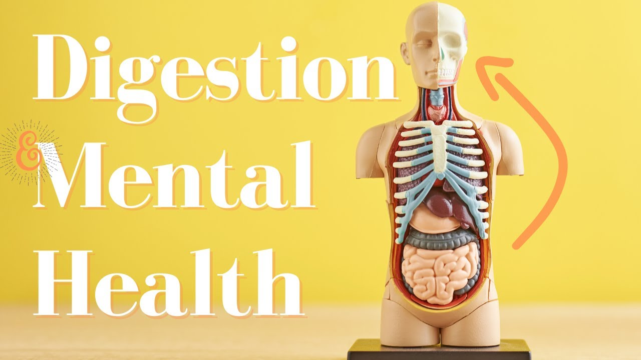 Digestion & Your Mental Health