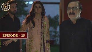 Do Bol Episode 25 | Top Pakistani Drama