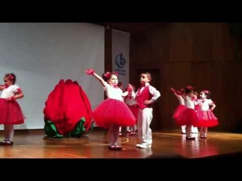 Yıl sonu Gösterisi 2012 '' Türkiyem''