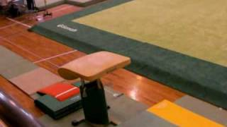 2008-9 社会人 体操競技選手権 難度6.4 跳馬 15.6