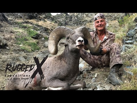 California Bighorn Sheep Hunt With J Alain Smith
