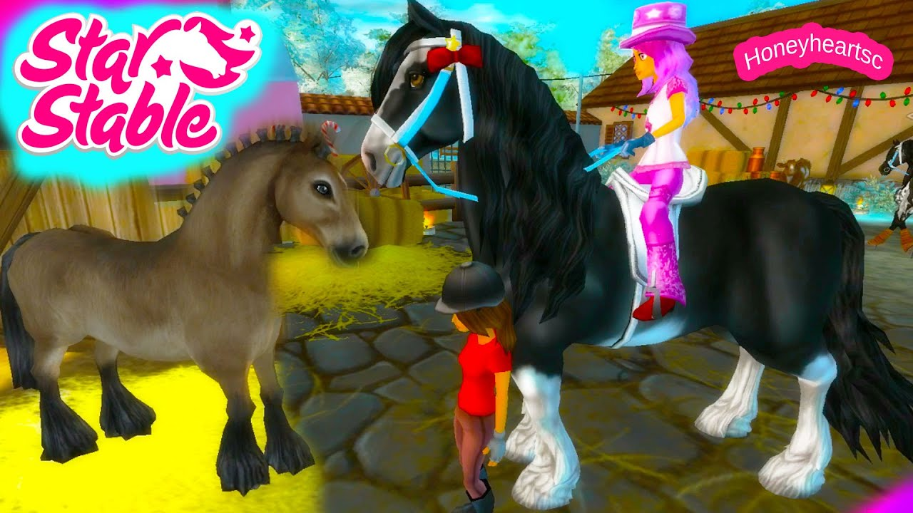 star stable how to become a star rider for free