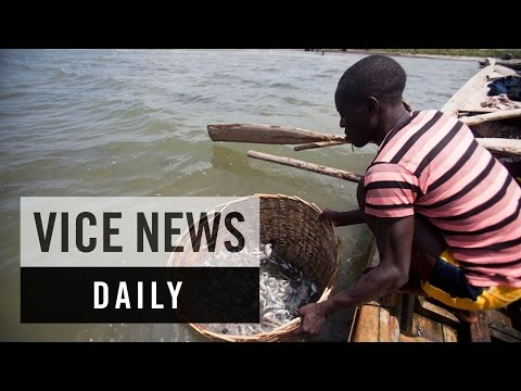 VICE News Daily: Saving Haiti's Northern Coastline