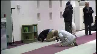 CityNews: Toronto's Ahmadiyya community grieves over attack on Peshawar school