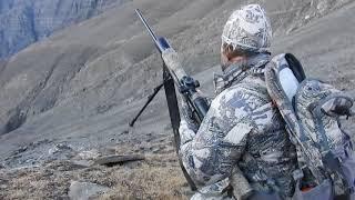 Dagestan Tur hunting in Azerbaijan...Kenan hunting...
