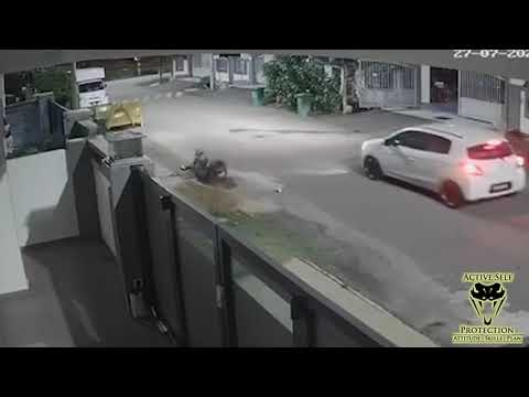 Malaysian Dog Attack Teaches Us Lessons