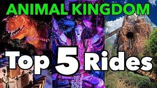List Of Disney S Animal Kingdom Rides