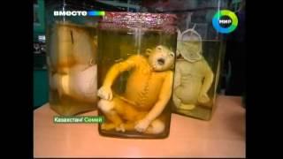 Mutant children in Kazakhstan