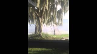 Lake June Lake House For Rent --Lake Placid Fla--Call 813-661-4268