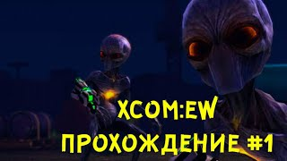 Ну , что , пацаны , эXCOM?)